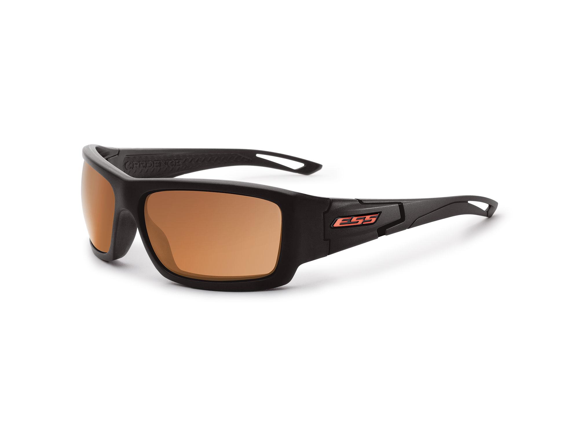 EE9015-06フレーム:ブラック、レンズ:ミラーコッパー