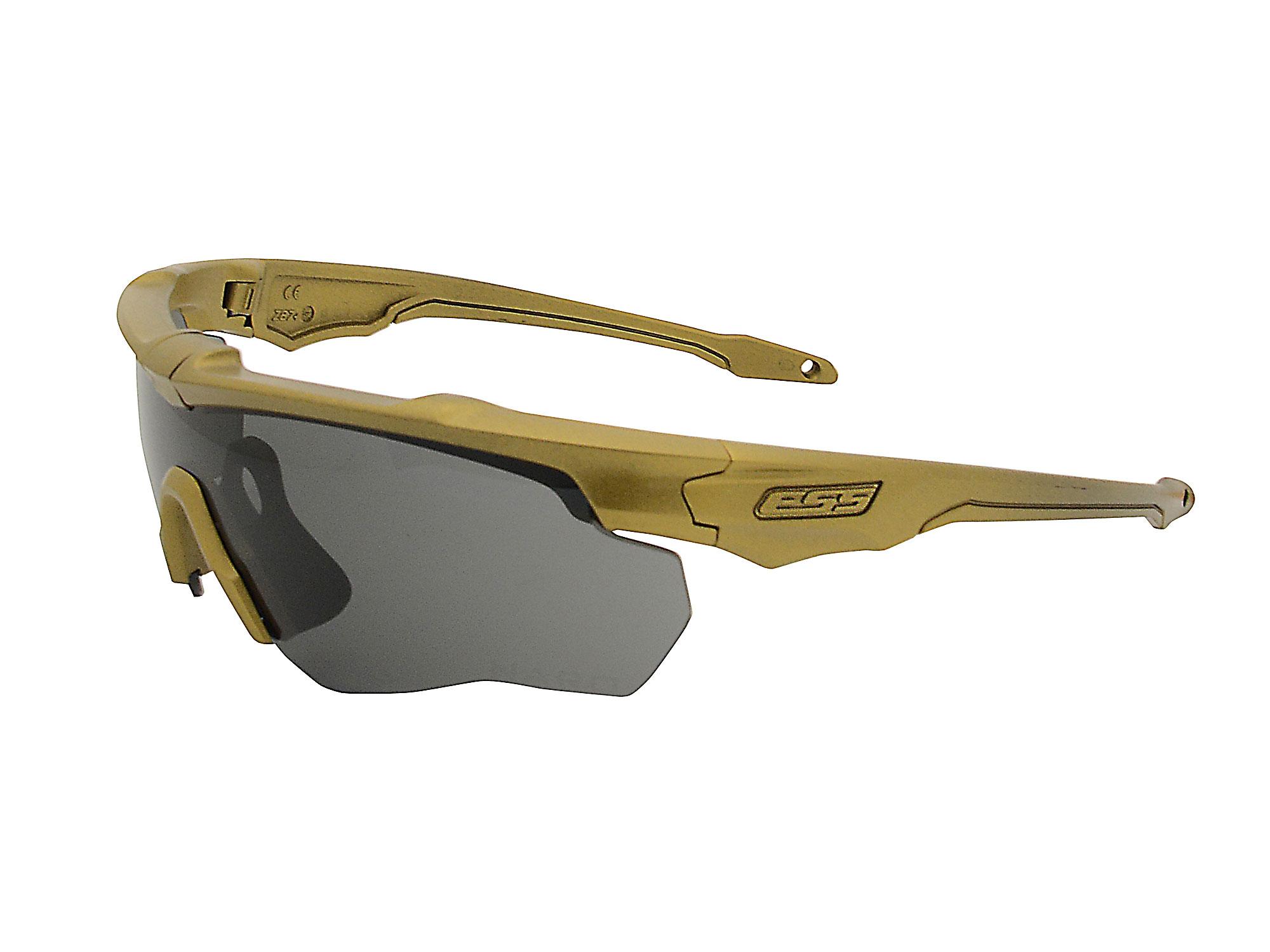 EE9034-108フレーム:ゴールド、レンズ:スモークグレイ