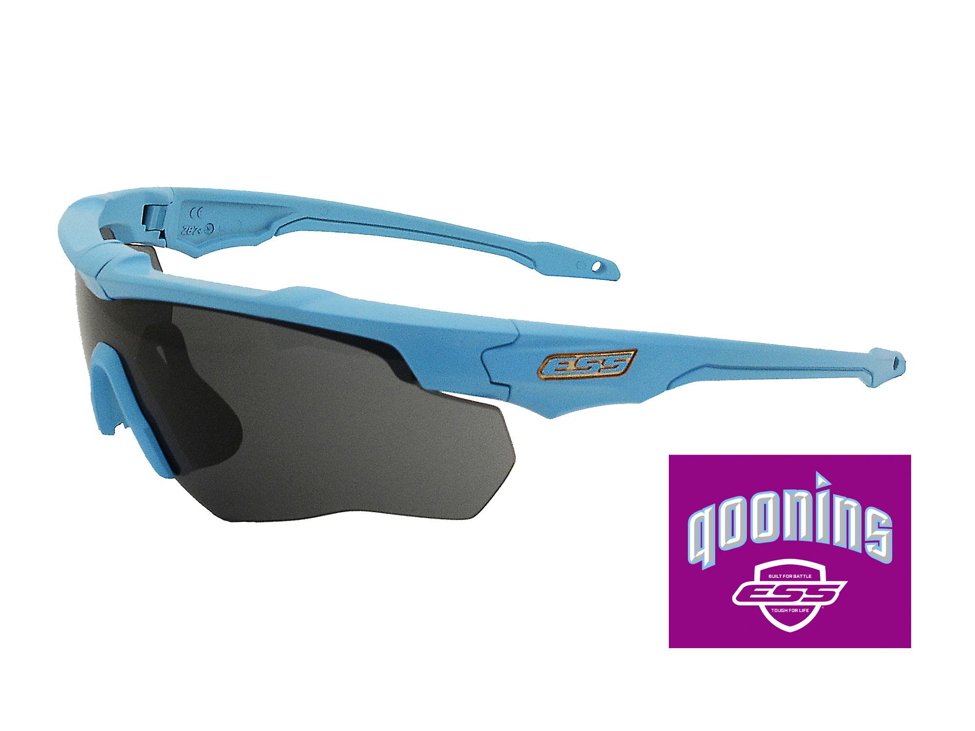 EE9032-qnsフレーム:クーニンズブルー、レンズ:スモークグレイ